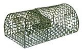 MGI DEVELOPPEMENT Ratas, Grande y Muy Resistente, Buen Producto, Agricultores, Verde,...