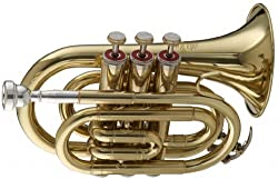 Stagg WS - TR245 Bb Pocket Trumpet with Case