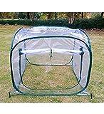 MDCG Planta Verde Cubierta Protectora Plegable Pequeño Jardín De Invierno Guardia De Aves Protección contra El Frío Aislamiento Película Transparente Invernadero Apertura Diseño De