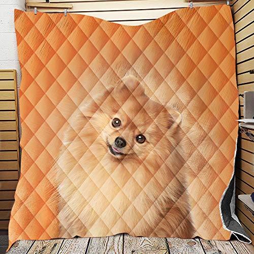 Fansu Tagesdecke Bettüberwurf Steppdecke Mikrofaser Doppelbett Einselbetten Tagesdecken Gesteppt Bettwäsche Sofaüberwurf Wohndecke 3D-Hundedruck Stepp Gesteppter Quilt (Pomeranian,150 * 200cm)