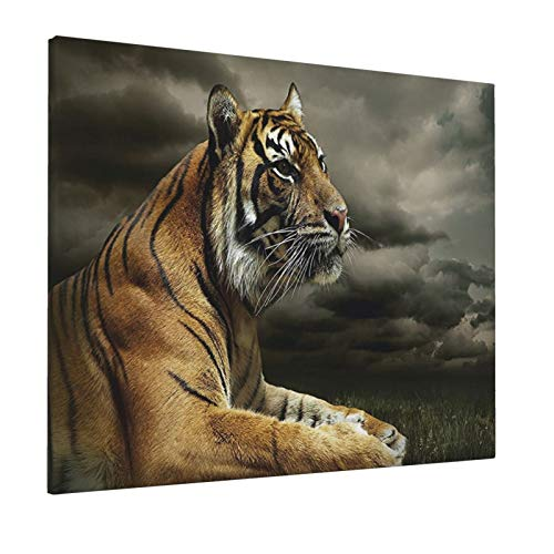 """Wildlife Nature Decor Collection Tiger Leopard Safari Jungle African Cat Black Gray Brownpainting 16"""" X 20"""" Panoramic Canvas Wall Art"""