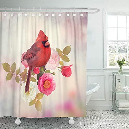 Cardinal Shower Curtain Set