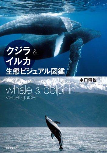 クジラ&イルカ生態ビジュアル図鑑の詳細を見る