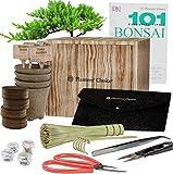 Kit de Iniciación de Bonsái Premium + Libro 101 Consejos Esenciales y Kit de Herramientas Completo - en Caja de Regalo de Madera Única - Cultive Fácilmente 4 Árboles a partir de Semillas