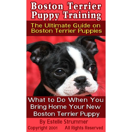 Boston Terrier Puppy Training: The Ultimate Guide on Boston Terrier Puppies, What to Do When You Bring Home Your New Boston Terrier Puppy