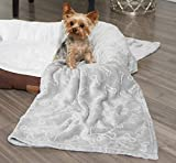 Style Basics Pet Blanket Large 55 X 40 for Dogs and Cats - Solid Plush Flannel Silky Soft Fleece Cozy - 55 X 40, Grey Dog Bone
