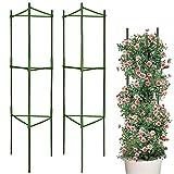 LIBRNTY Sturdy Garden Supporto per Piante paletti Gabbia per Piante di pomodori Piante, Ac...
