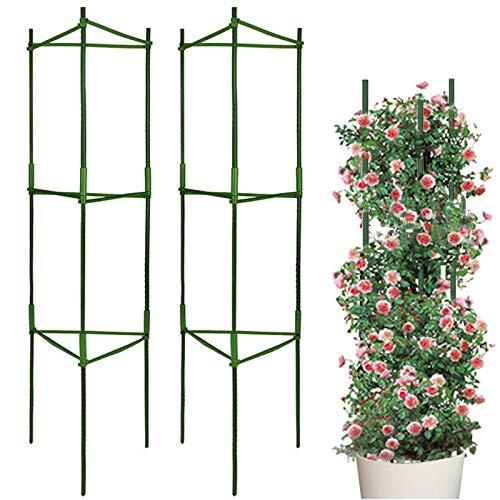 LIBRNTY 2pcsPlantes de Support,Cage à tomates,Stable Support de Plante de Tomate,Jardin Treillis Fleur Support en Acier Inoxydable Grimper légumes & Fleurs et Fruits Grow Cage,avec bielle,réutilisable