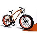 YCHBOS 26' Bicicletas de Montaña Fat Tire, Bicicleta de Nieve Beach Adulto, Cruiser Bike, Fat Bike Super Wide Neumáticos Hombres y Mujeres, Doble Freno de Disco, 24 VelocidadE