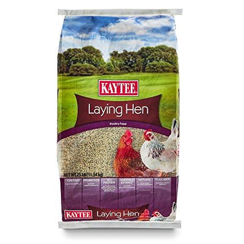 Kaytee Laying Hen Diet, 25 Pound