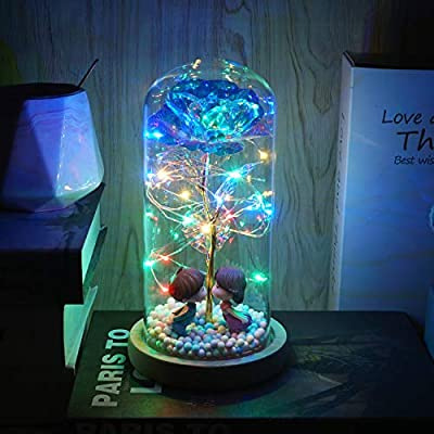 Beferr Beauty and The Beast Rose Enchanted Colorful Foil Flower with LED Light in Glass Dome for Valentine Mother's Day Birthday Christmas Best Gifts for Girlfriend Wife (Kiss)