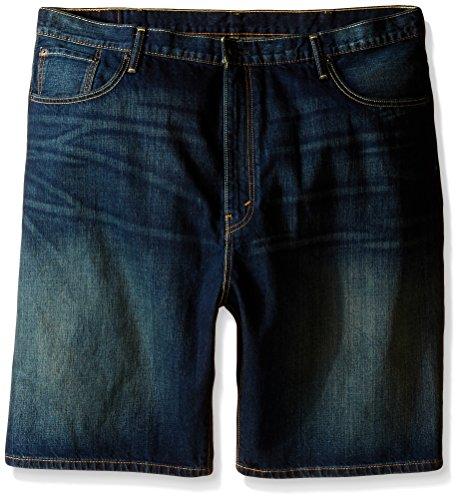 Levi's Men's Big and Tall 569 Loose Straight Denim Shorts, Springstein, 46