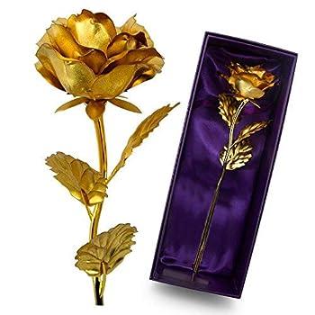 Best gold foil rose Reviews