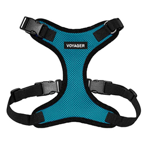 Best Pet Supplies Voyager Step-in Lock Dog Harness - Adjustable Step-in Vest Harness for Small and Large Dogs - Turquoise, Medium, M (Chest: 16-24