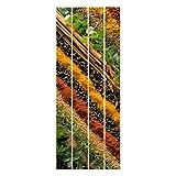 Bilderwelten Cuadro de Madera - Spice Strips 100x40cm