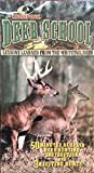 Deer School: Lessons Learned from the Whitetail Deer