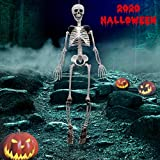 """Evoio 40""""Tall Halloween Skeleton - Full Body Halloween Skeleton with Movable Joints for Best Halloween Decoration"""