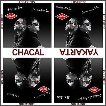 La Ruleta - Lo Mas Nuevo y Sus Exitos (Cubaton Presents El Chacal Y Yakarta)