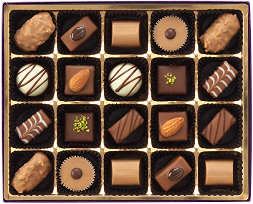RUYSDAEL (ロイスダール) アンジェ (HA20) チョコレート20粒