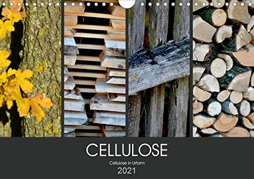 Cellulose, Cellulose in Urform (Wandkalender 2021 DIN A4 quer)