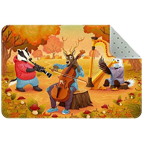 Biaoya Alfombra de área para niñas, habitación de niños, alfombra resistente, lavable, alfombra para dormitorio adolescente, otoño, bosque animal, fiesta de música