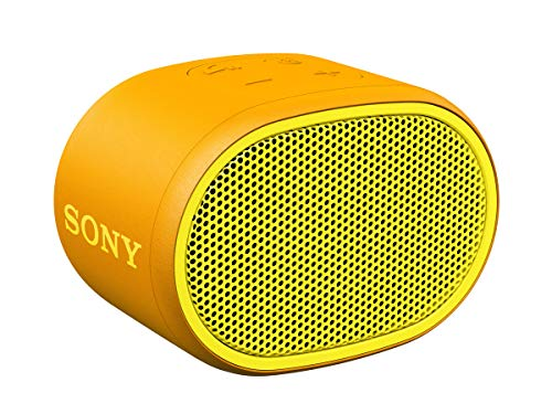 SRS-XB01 - Speaker wireless portatile con EXTRA BASS, Resistente all'acqua, Bluetooth, Giallo