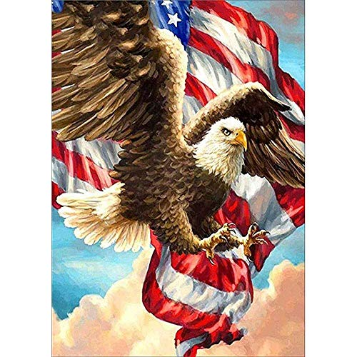 Hiseoser Diamond Painting Kits for Adults,Diamond Painting Accessories for DIY Home Art Painting Decoration Eagle Flying Flag