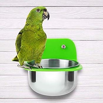 Pssopp Mangeoire pour Perroquet, Tasse de Distribution d'eau en métal avec Support de Suspension pour Perruche inséparable Perruche calopsitte Oiseau Hamster Gerbille Lapin(Vert-S)