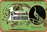 KODY HYDE Metall Poster - Peacock Lima Beans - Vintage