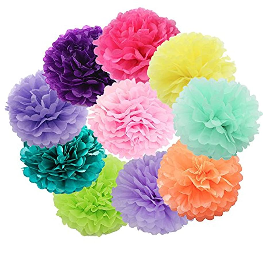 Daily Mall DIY Tissue Paper Flower 10pcs 8 inch 10 inch Decorative Hanging Flower Balls Craft Paper Pom Poms For Wedding, Baby Shower, Birthday, Party Decorations (Colorful)