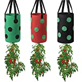 FGYZYP Garden Hanging Tomato Strawberry Planting Grow Bag, 3 Pcs Multi-Color Upside Down Vegetable Planter with 12 Grow Holes & Handle, Grow Hanger Bag for Tomato Chili Strawberry Fruit House Garden