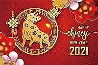 新しい10x7ft明けましておめでとうございます2021年メリークリスマスの背景中国の旧正月赤い紙の花の背景フェスティバルお祝いパーティーの背景写真の背景写真スタジオ