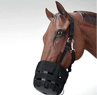 Aime Imports Economy Nylon Halter Grazing Muzzle Pony