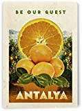 AZSTEEL Turkey Antalya Vintage Travel Poster | Poster No