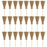 WINOMO 24 Mini-Besen für Puppenhaus-Besen mit braunem Strohbesen zum Basteln, kleiner Staubbesen