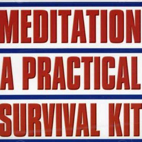Meditation: A Practical Survival Kit