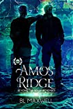 Amos Ridge (Beyond the Realm: Remember Book 5) (English Edition)