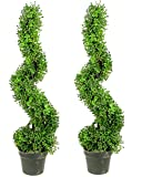 Admired by Nature 2 x 3' Aritificial Boxwood Leave Spiral Topiary Plant Tree in Plastic Pot, Green/Two-Tone