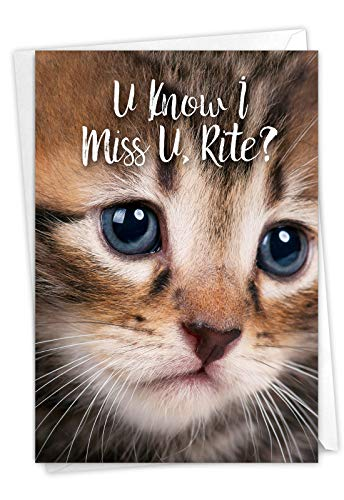 NobleWorks, Miss U Kitties - Cute Miss You Card with Envelope - Goodbye, Thinking of You Notecard - Adorable Pet Cat C3365BMYG