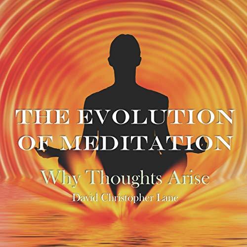 Couverture de The Evolution of Meditation