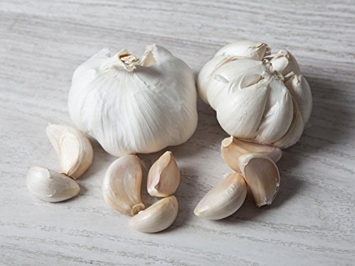 5 kg. Ajo Blanco 2ª Categoria - Selección Gourmet