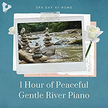 1 Hour of Peaceful Gentle River Piano