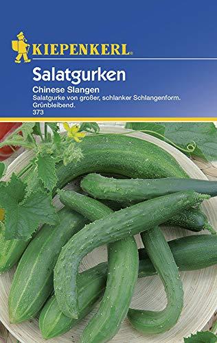Sperli 373 Gemüsesamen Salatgurken Chinese Slangen, grün