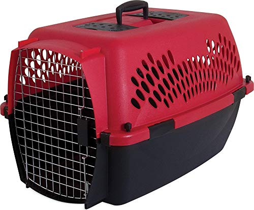 Petmate 21090 Aspen Pet Porter Heavy-Duty Pet Carrier With Secure Lock, 20-25 lbs, Deep Red/Black