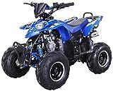 Kinder Quad S-5 Polaris Style 125 cc Motor Miniquad 125 ccm Razer