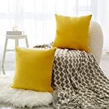 NEERYO Pack of 2 Velvet Cushion Covers Soft Square Pillowcase Decorative Solid Color Sofa Throw Pillow Covers 18 X 18 Inch for Couch Bedroom Bed Farmhouse Decor Pillow Slipcovers Yellow