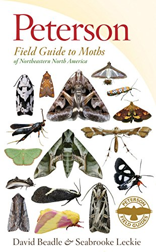 Image OfPeterson Field Guide To Moths Of Northeastern North America (Peterson Field Guides)