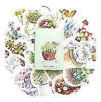 シンプルなパターンのポストカードの美しいポストカードクリエイティブカード、植物