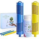 CESARIAS Spa Mineral Filter Sticks Cartridge for Hot Tub, Pool Testing Strips 6in1 Ph, Total Chlorine, Alkaline, Hardness, Cyanuric Acid, Water Quality Test Strip 50pcs, Kit of 3