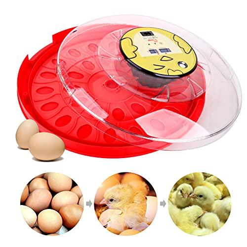 M.Z.A 30 incubador de huevos digital con regulación automática de la temperatura para gallinas con bandeja para huevos, enchufe de la UE